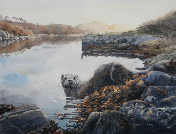 Otter, Scotnish Jetty